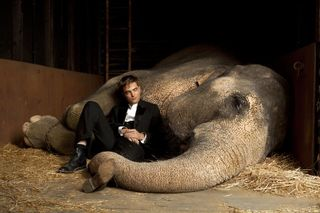 Water elephants robert pattinson