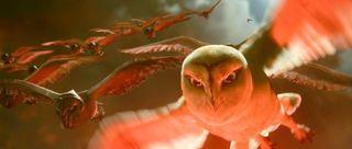 Owls ga'hoole flying