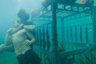 Shark cage strangle
